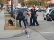 Second Video Of Dog Shooting Exonerates Police, Department Says, Lawyers Disagree (VIDEO)
