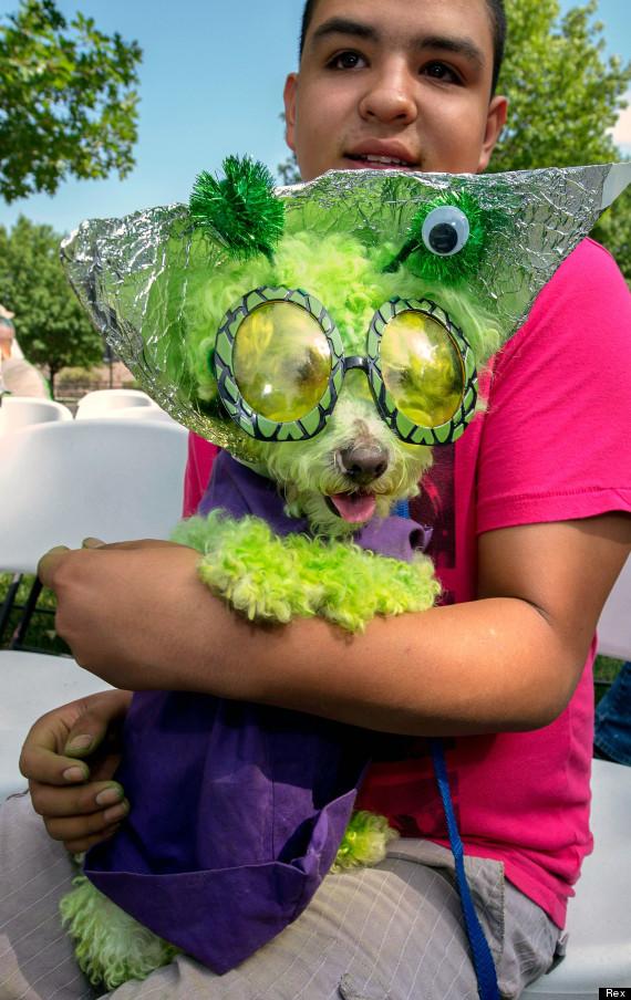 ufo festival pet costume contest roswell mexico