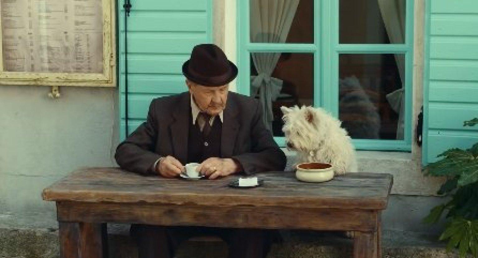 Cesar Dog Food Commercial Man S Best Friend