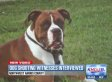 Off-Duty Police Officer Shoots Family's Dog Dead