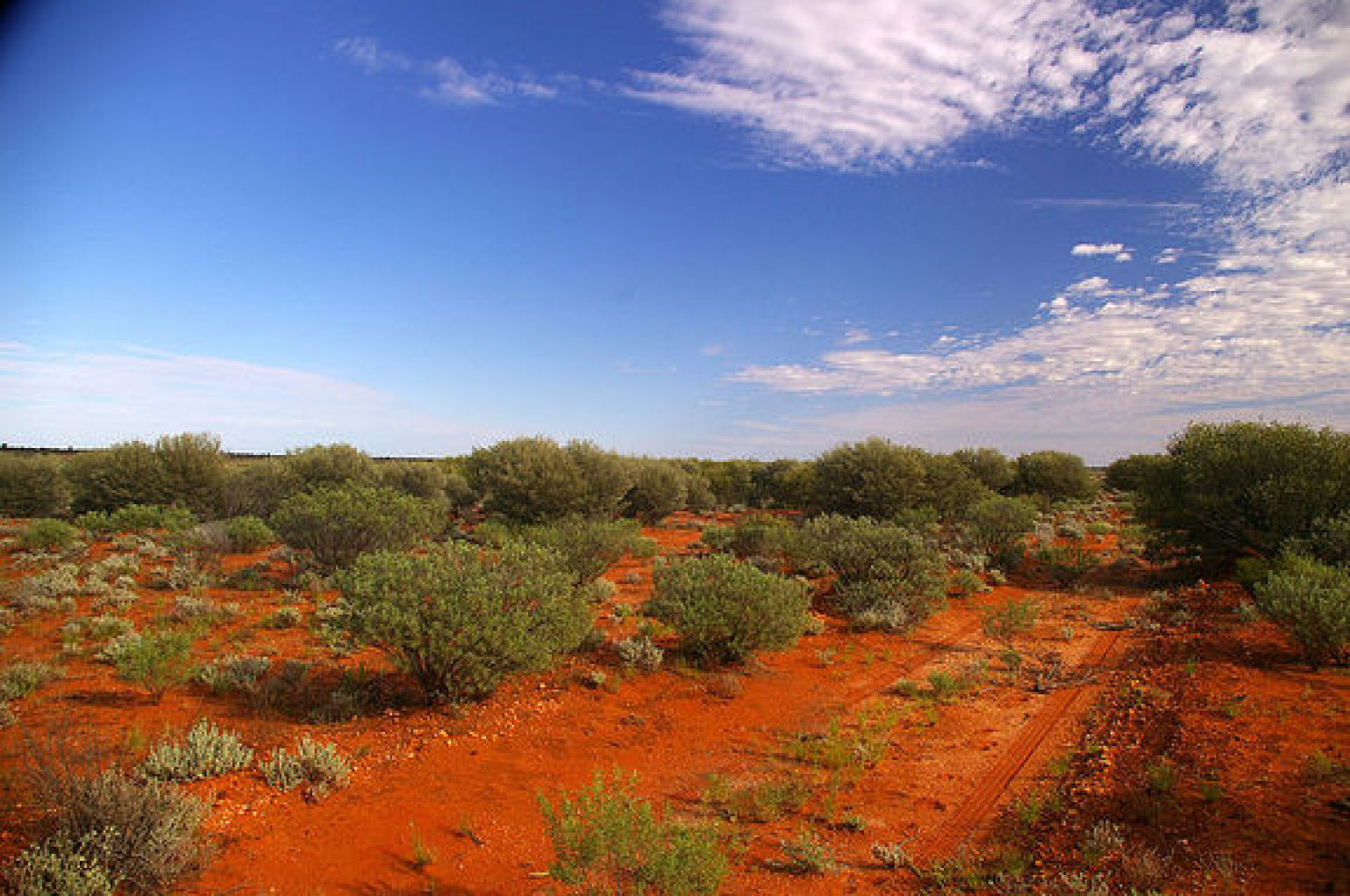 Australia like mars dirt in outback may mimic red planet for South australia landscape