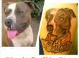 LA Deputies Shot Dog, Let It Bleed To Death, Owner Alleges In Lawsuit
