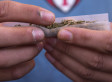 Legalized Marijuana Prompts A Question: What About Hash?