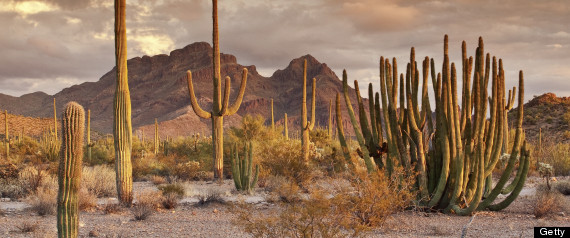 Arizona Vacation Deals