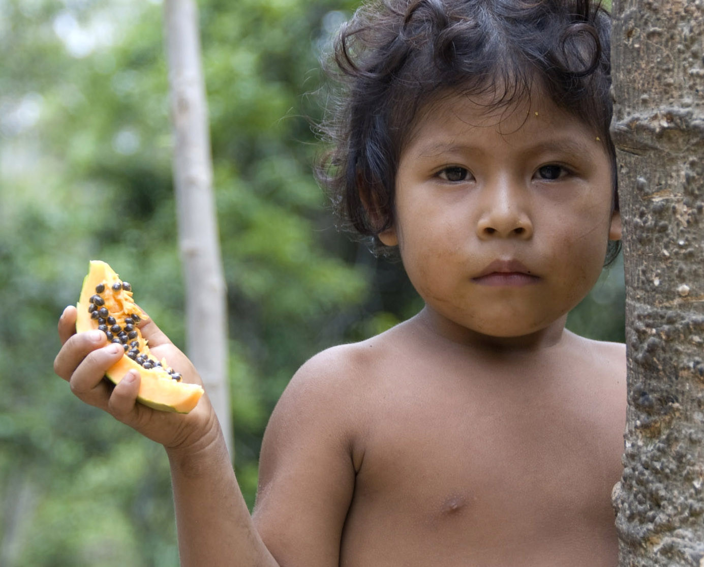 Brazils Army Moves To Protect Indigenous Aw Tribe By -1548