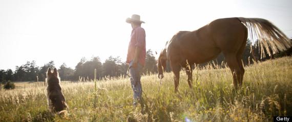 COLORADO FARMERS