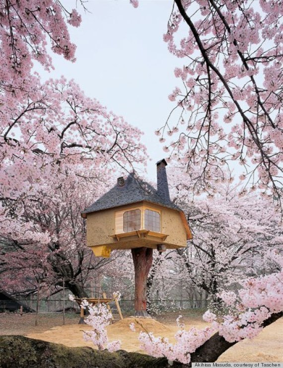 Biggest Treehouse In The World 2013 the 8 most amazing treehouses in the world, including one that