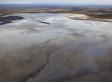 Primrose Oil Spills Continue; Cause Is Still Unknown