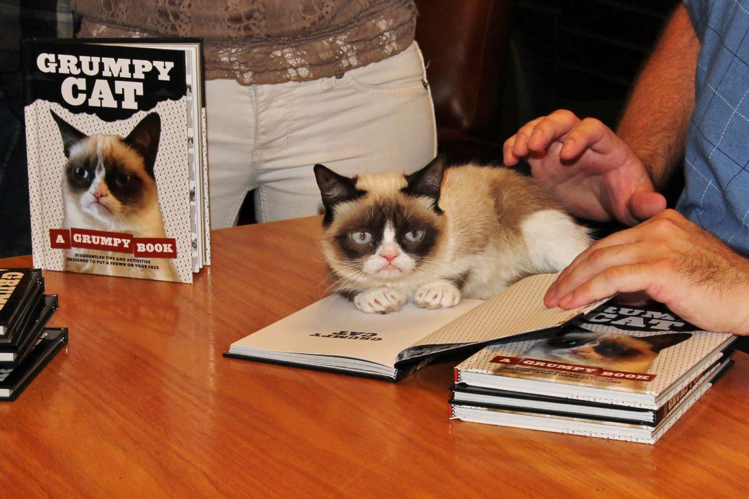 grumpy cat does not - photo #9