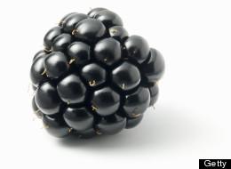 Crazy Blackberry Milkshake