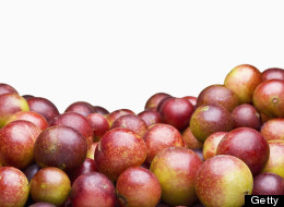 11 Things You Need To Know About Camu Camu