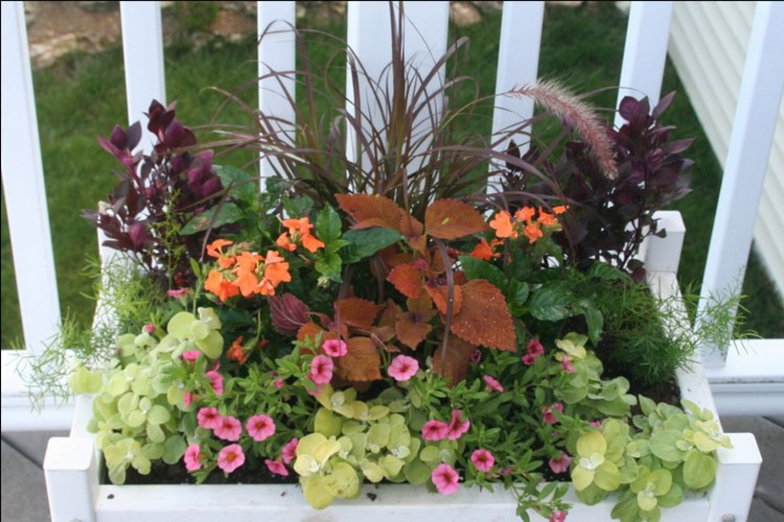 Container gardening basics the dirt on soil huffpost - Container gardening basics ...