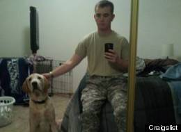s-SOLIDERS-DOG-GIVEN-AWAY-large.jpg
