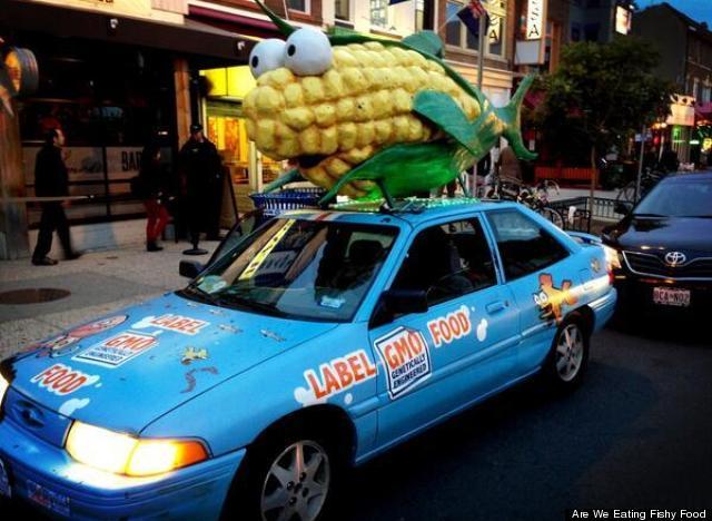fish corn car