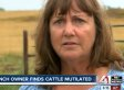 Lyn Mitchell, Missouri Rancher, Suspects Aliens Mutilated Her Cows