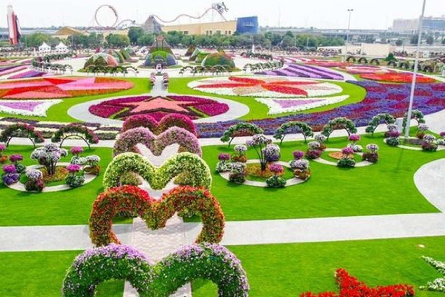 Pictures Of Garden dubai miracle garden is one of the most amazing things we've seen