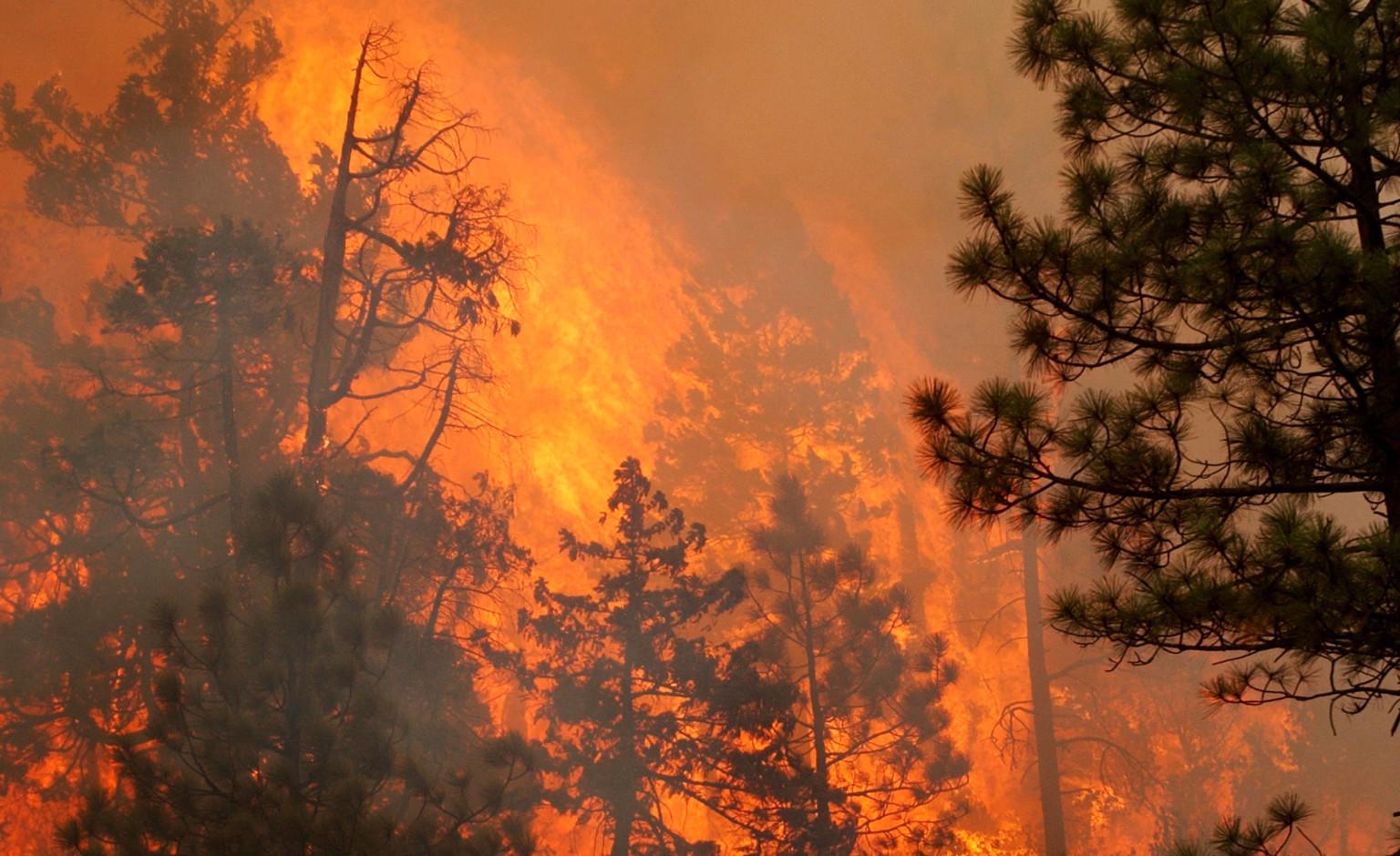 john hammack killed while battling oregon wildfire  another firefighter injured