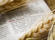 For People With Celiac, Persistent Intestinal Damage Linked With Lymphoma Risk