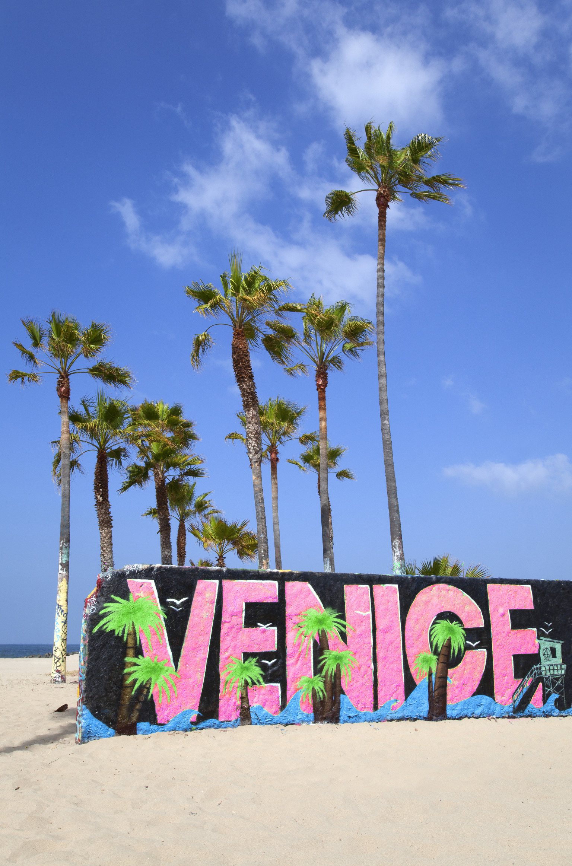 Top 8 Reasons To Visit Venice, California