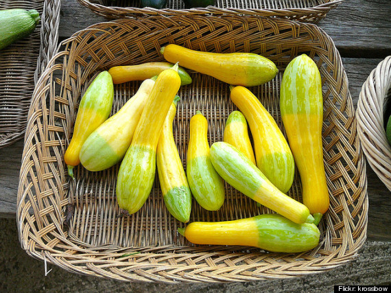 summer squash guide what s what and how to cook them photos
