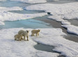Records For Arctic Ice Melt, Greenhouse Gas Emissions In 2012 As World Warms: Report