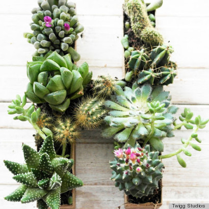 DIY Succulent Planter In The Shape Of An Initial Makes A Sweet Gift Or ...