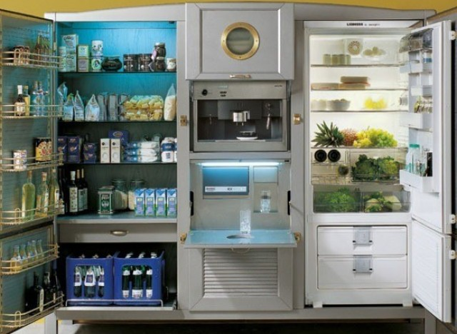 Luxury Refrigerators the most expensive refrigerators have one particular feature in