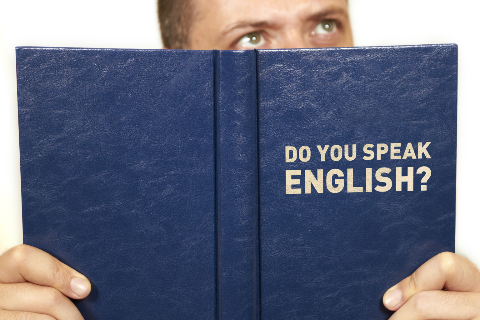 essay immigrants should learn english