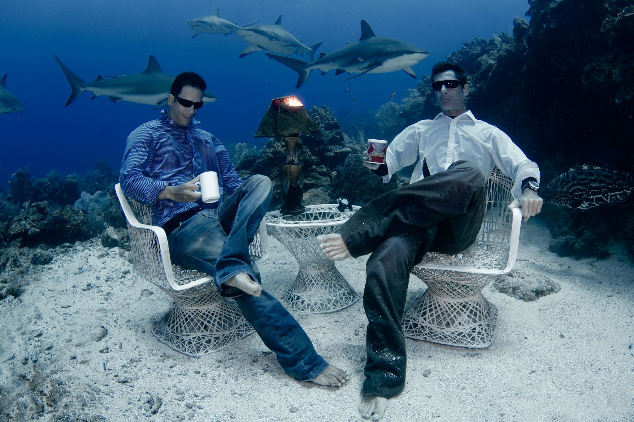 underwater photos tea
