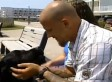 Jared Goering, Vet With Disabilities, Kicked Off New Jersey Boardwalk By Police For Using Service Dog (VIDEO)