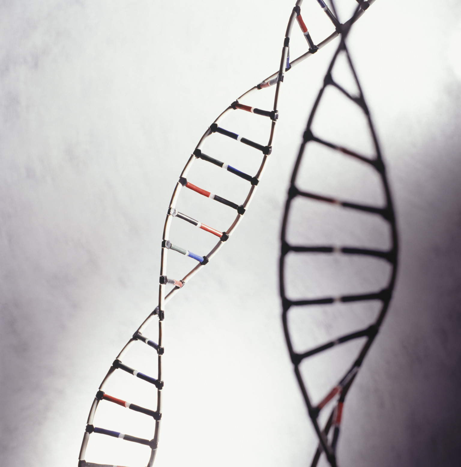 """an analysis of the relationship between criminal behavior and genetics Criminologist's research shows genes influence criminal behavior  a behavior genetic analysis"""" detailed the  connections between genes and an individual ."""