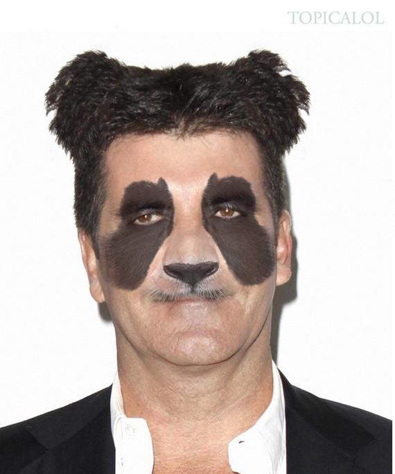 simon cowell panda