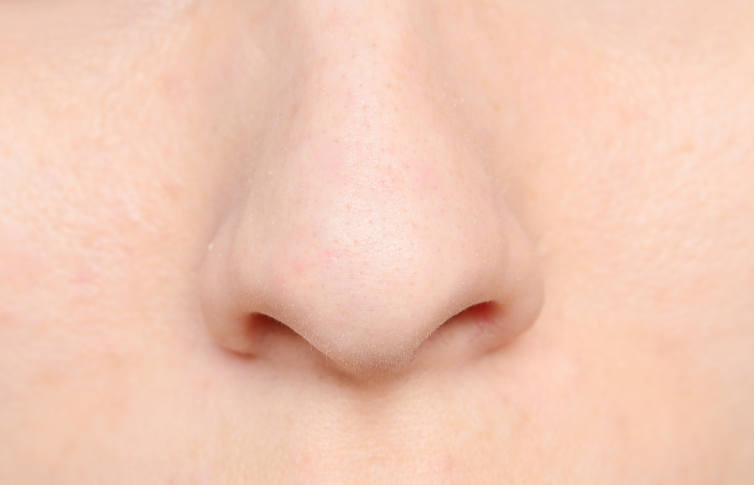 Nose Anatomy Stock Images, Royalty-Free ... - Shutterstock