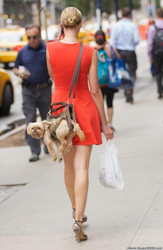 puppy purse