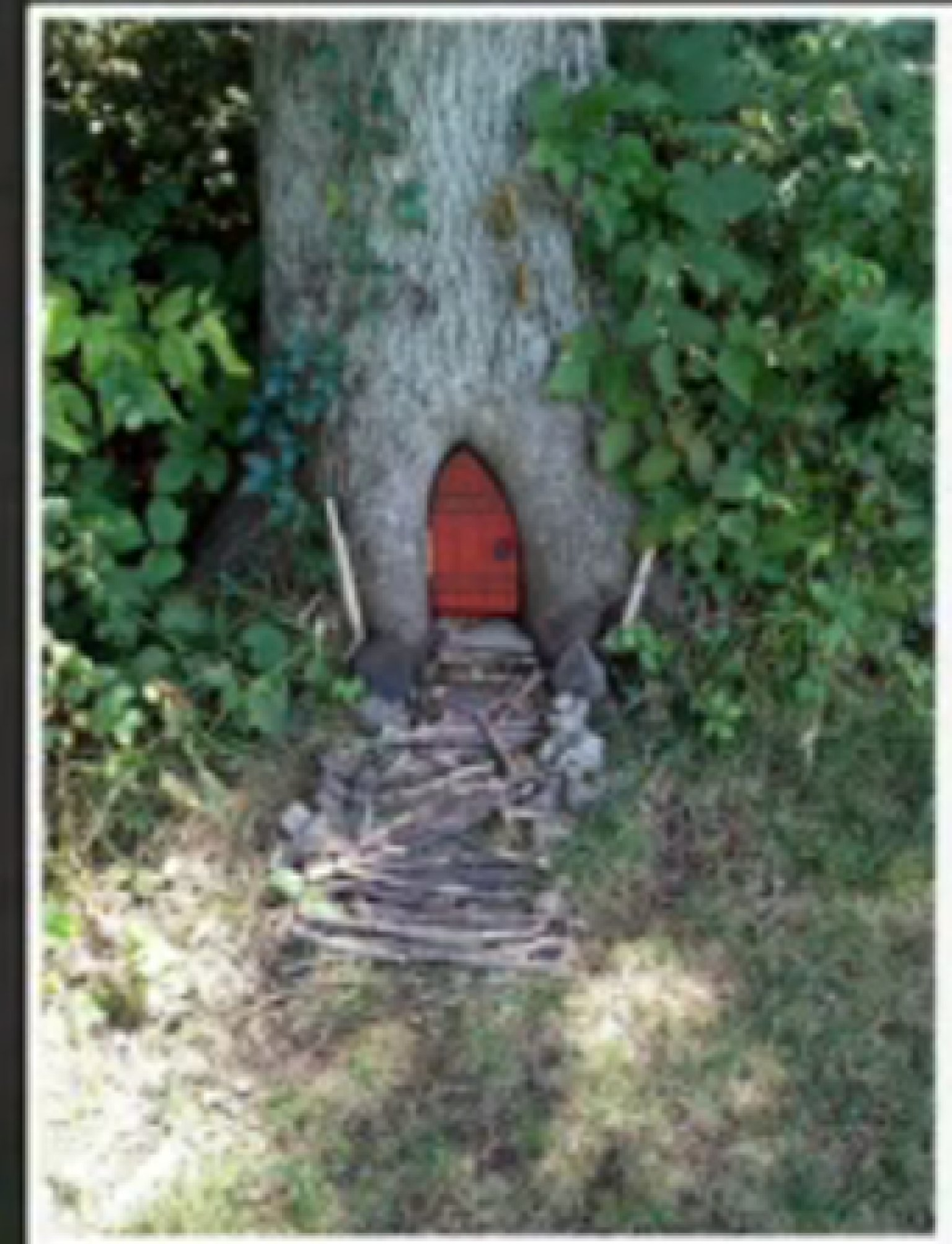 Gnome Homes Appear Around Kansas Town | HuffPost