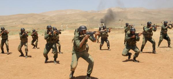 Armée syrienne ce à quoi seront confrontés les occidentaux en cas