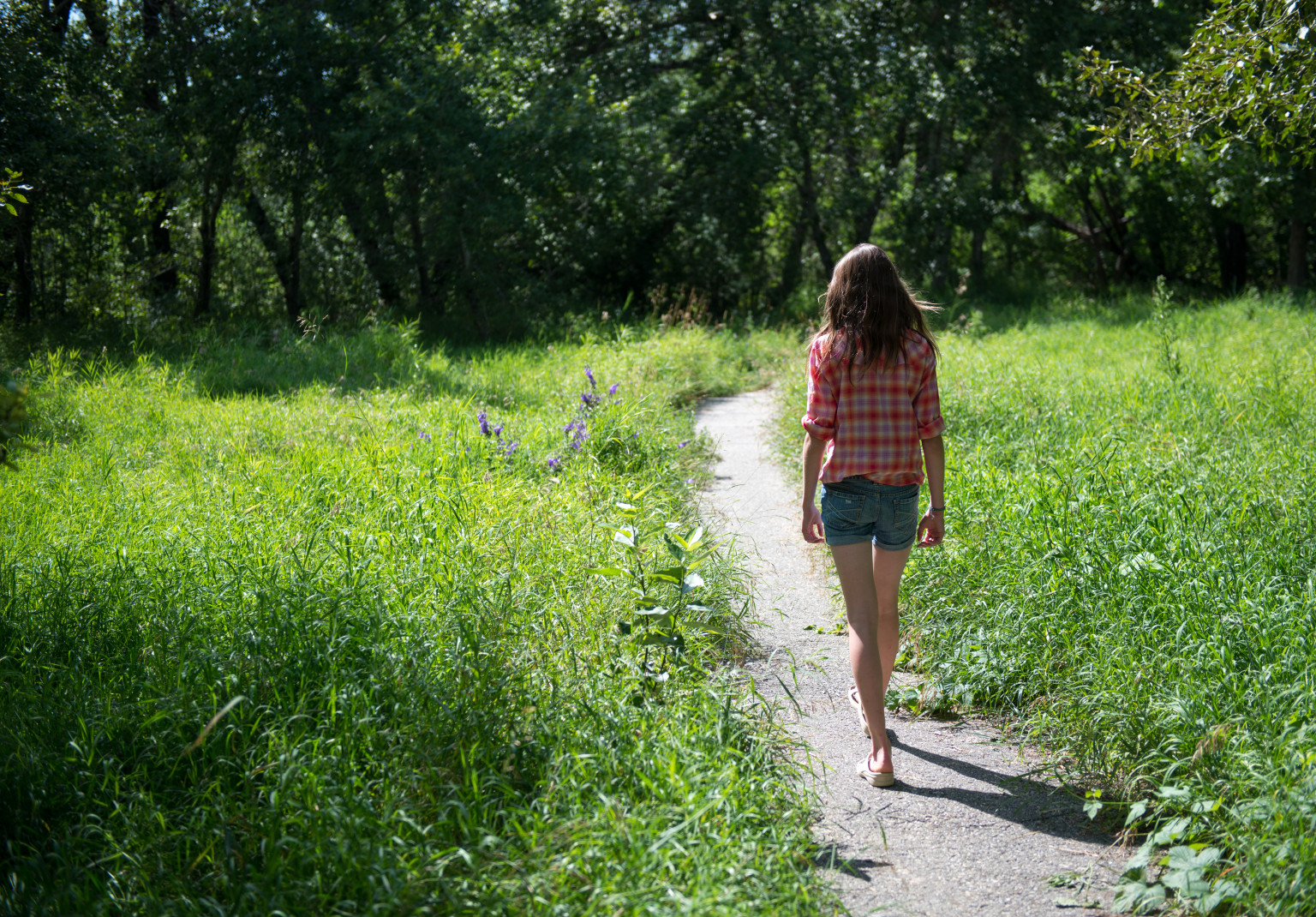 Walking into well being the power of the gratitude walk the