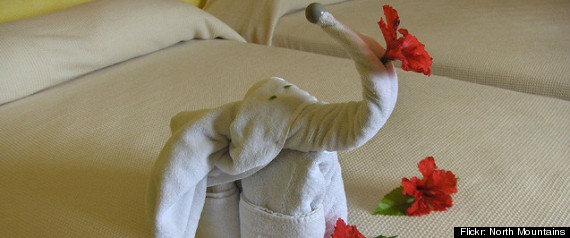 Hotel Towels Art