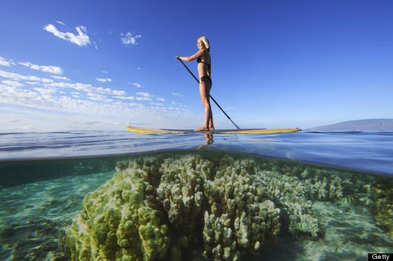 surfer coral hawaii