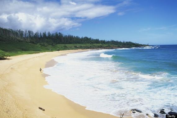 donkey beach hawaii