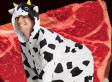 Man In Cow Costume Stole Steak: New Zealand Police