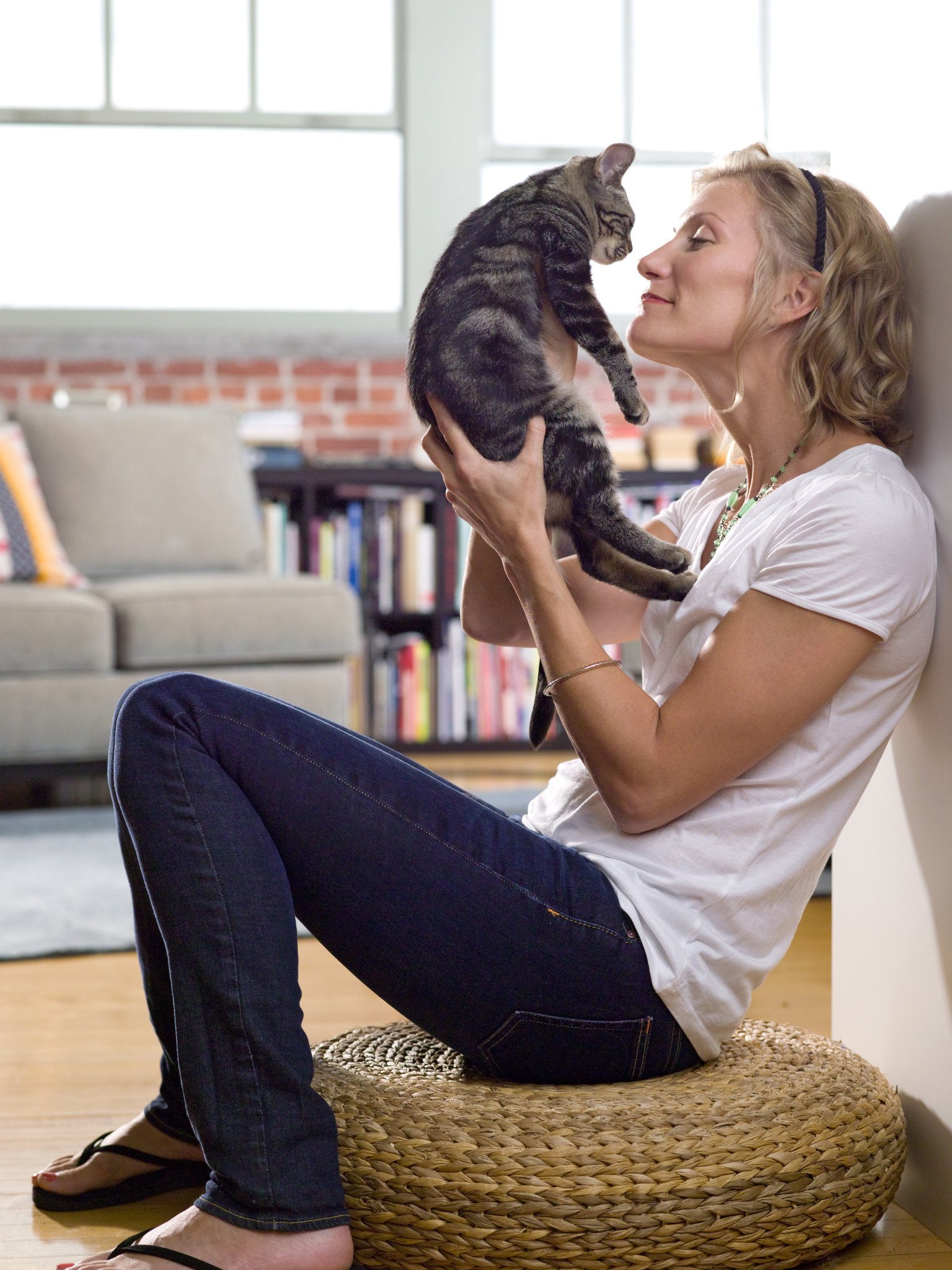 Psychotherapy and cat