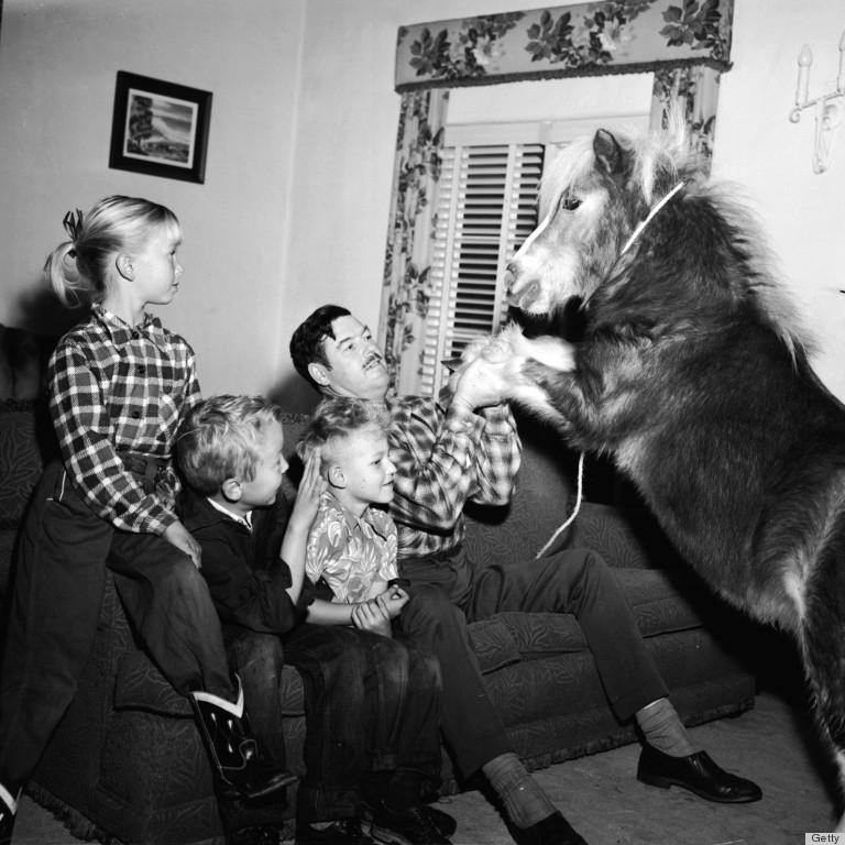 weird house pet