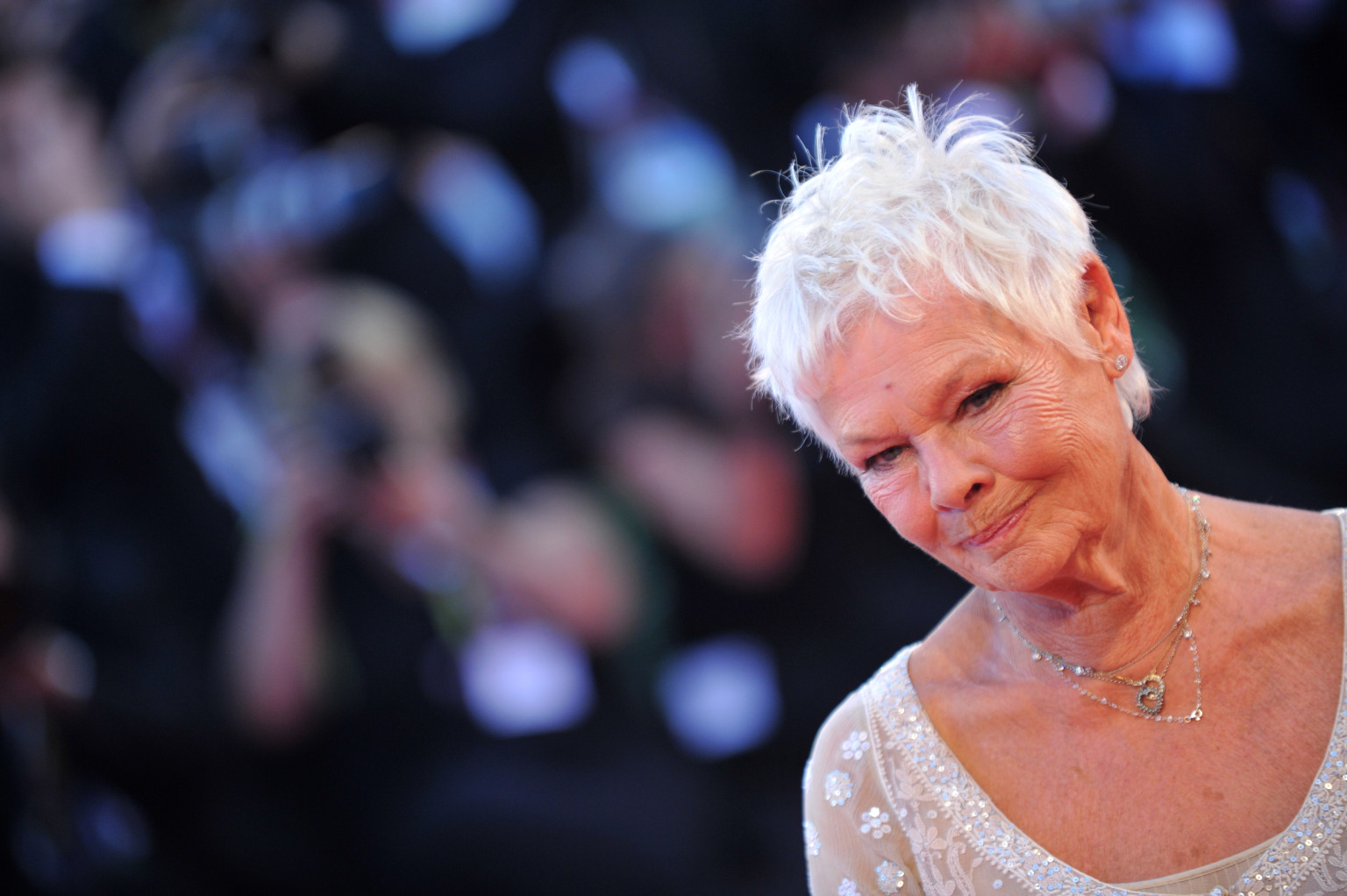 judi dench hairstyle Book Covers