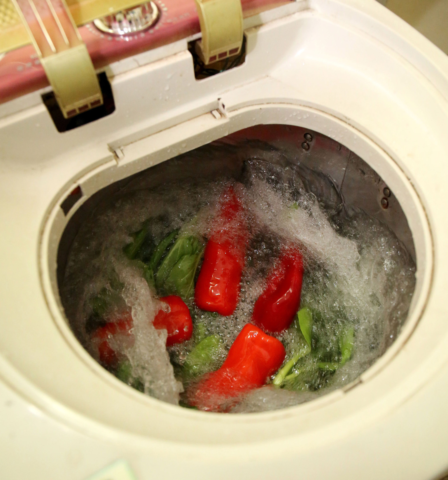 Раком на стиральной машинке 18 фотография