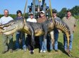 727-Pound Gator Caught In Mississippi River Is A Record Breaker