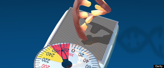 Obesity in the Genes? - WebMD