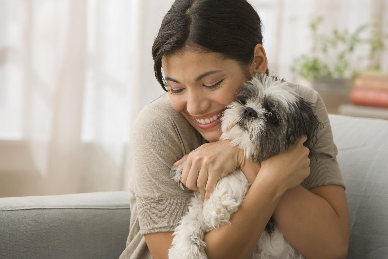 How do you care for a dog?