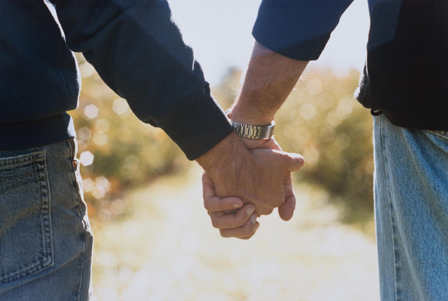 presbyterian pca gay clergy vote 2009