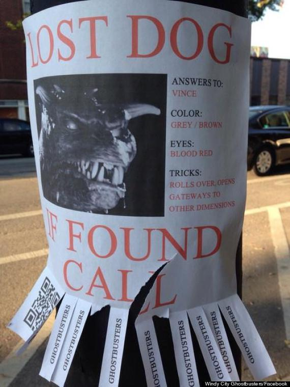 Best Lost Dog Flyer Ever Or Best Lost Dog Flyer Ever? | The